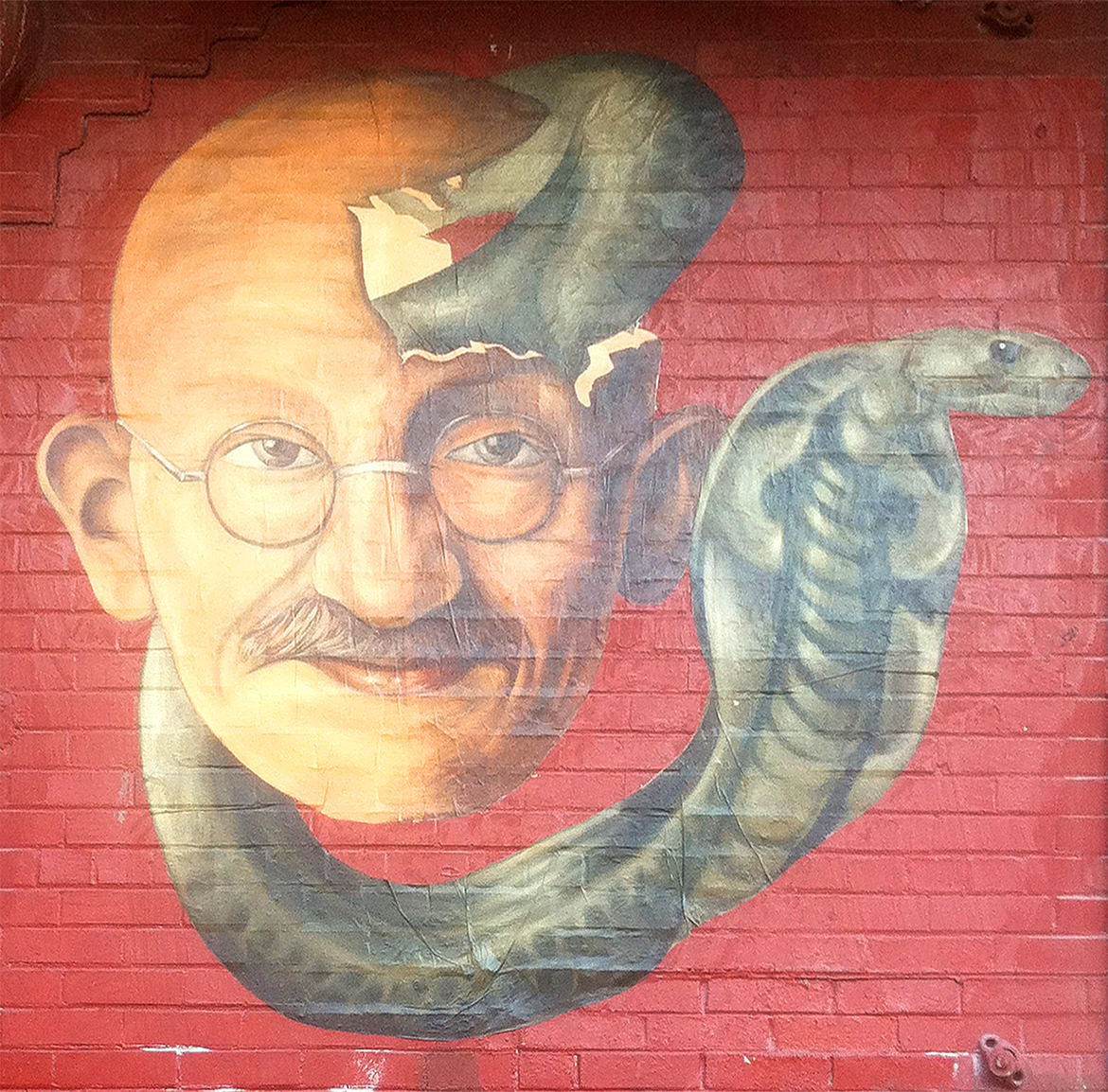 Gandhi and the cobra