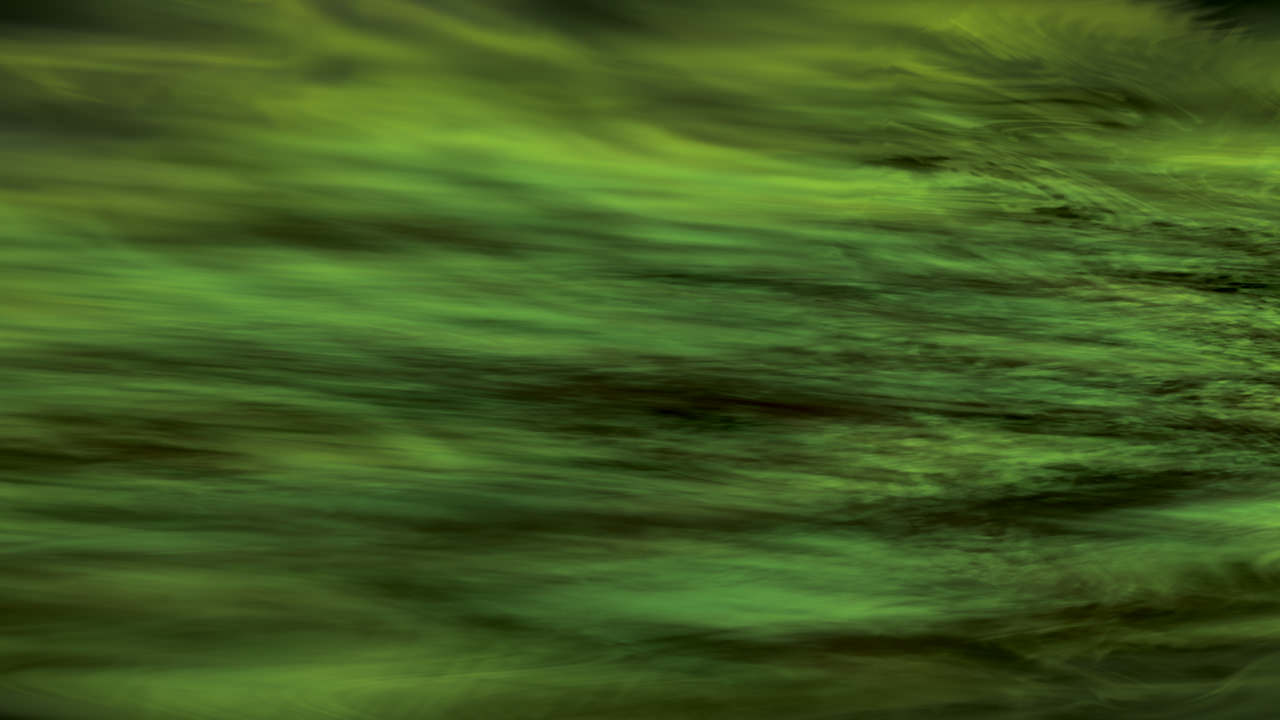 Green and black trail digital painting